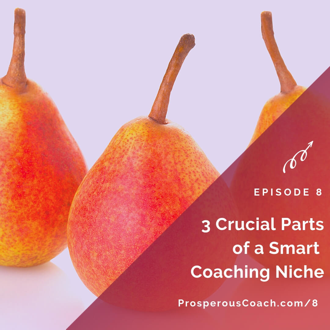 3 Crucial Parts of a Smart Coaching Niche